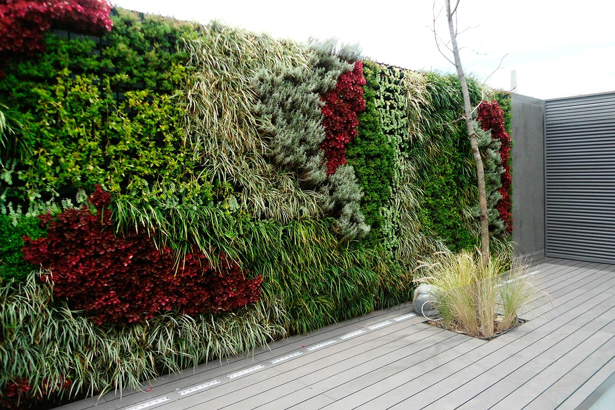 Jardines verticales ead escuela argentina de dise o for Plantas usadas para jardines verticales